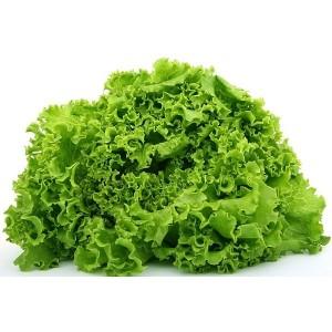bio-salatka-moravsko-selo